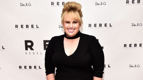 Rebel Wilson would look great in a Cherry Velvet Plus Size dress don't you think?